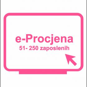 e-Procjena za tvrtke od 51 do 250 zaposlenih